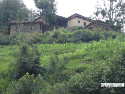 Elum valley
